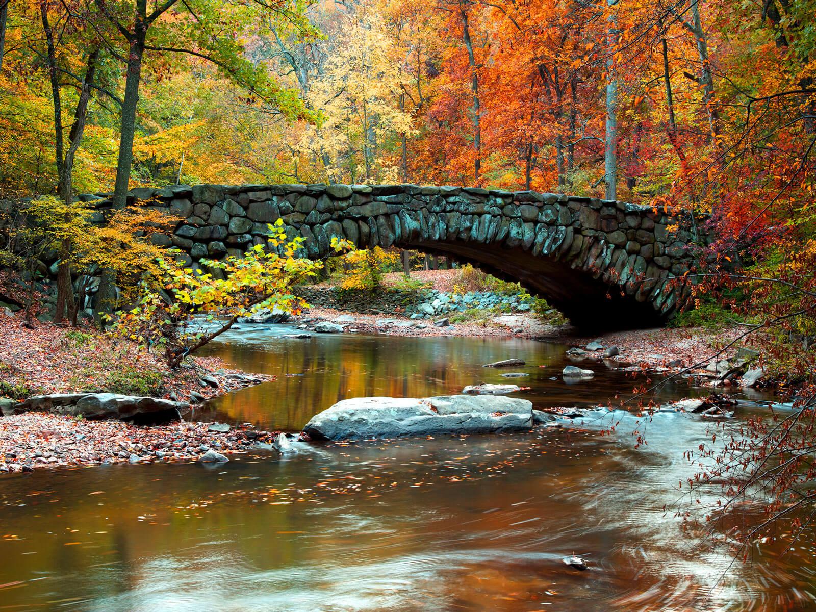 stone bridge over creek